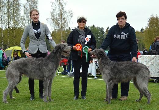 Helsingin KV 05-2014